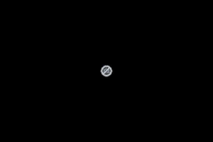 Digitalni prikazovalnik ŠKODA